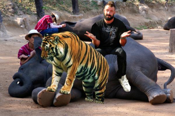 wilson zookeeping san diego